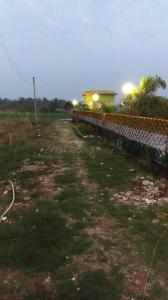 Gallery Cover Image of  Sq.ft Residential Plot for buy in Rasapunja for 400000