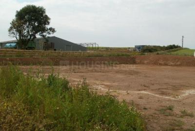 Gallery Cover Image of  Sq.ft Residential Plot for buy in Manjari Budruk for 220000000