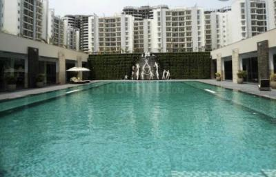 Gallery Cover Image of 1650 Sq.ft 3 BHK Apartment for rent in Omaxe Grand Woods, Sector 93B for 25000