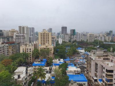 Gallery Cover Image of 1400 Sq.ft 3 BHK Apartment for rent in Andheri West for 55000
