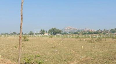 150 Sq.ft Residential Plot for Sale in Amangal, Hyderabad
