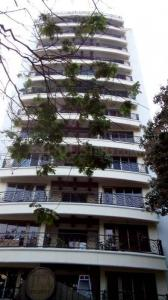 Gallery Cover Image of 1850 Sq.ft 3 BHK Apartment for rent in Khar West for 220000