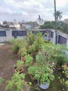Gallery Cover Image of 5000 Sq.ft 9 BHK Independent House for buy in Machuabazar for 32000000