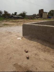 748 Sq.ft Residential Plot for Sale in Ballabhgarh, Faridabad