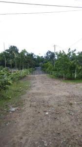 725 Sq.ft Residential Plot for Sale in Thakurpukur, Kolkata