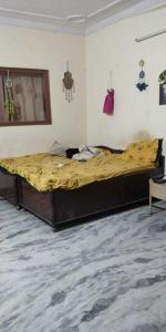 Gallery Cover Image of 800 Sq.ft 1 BHK Independent Floor for rent in Sector 40 for 13000