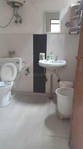 Common Bathroom Image of PG 5168258 Lajpat Nagar I in Lajpat Nagar