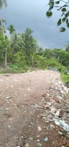 Gallery Cover Image of  Sq.ft Residential Plot for buy in Joka for 240000