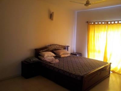 Gallery Cover Image of 1300 Sq.ft 2 BHK Apartment for rent in Koregaon Park for 50000