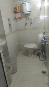 Common Bathroom Image of PG 4909637 Hauz Khas in Hauz Khas