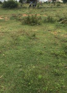 1200 Sq.ft Residential Plot for Sale in Sathgalli, Mysore