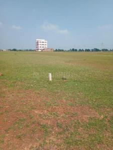 1125 Sq.ft Residential Plot for Sale in Naya Raipur, Raipur