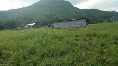 5760 Sq.ft Residential Plot for Sale in North Guwahati, Guwahati