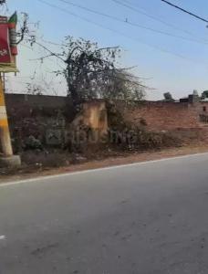 860 Sq.ft Residential Plot for Sale in Doiwala, Dehradun