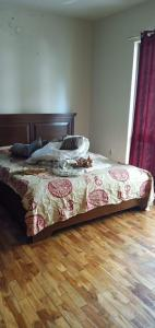 Gallery Cover Image of 1450 Sq.ft 2 BHK Apartment for rent in Marvel Vivacity, Kalyani Nagar for 55000