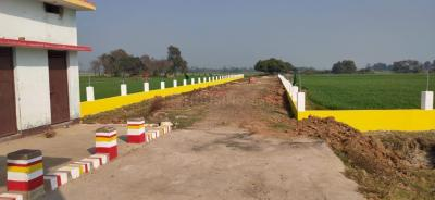 600 Sq.ft Residential Plot for Sale in Kidwaipur Postal Colony, Patna