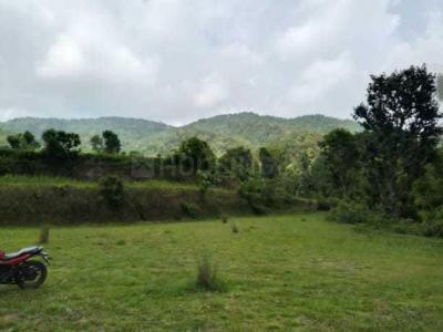 1800 Sq.ft Residential Plot for Sale in Lakkhi Bagh, Dehradun
