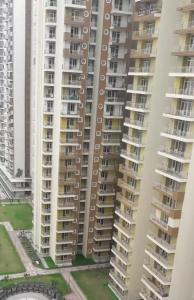 Gallery Cover Image of 940 Sq.ft 2 BHK Apartment for rent in Noida Extension for 9500