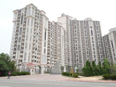 Gallery Cover Image of 1900 Sq.ft 3 BHK Apartment for rent in DLF Regal Gardens, Sector 90 for 18000