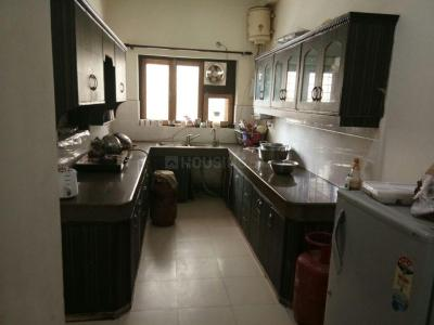 Kitchen Image of Chauhan PG in Sector 53