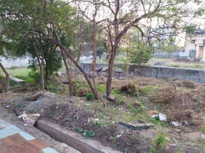 3500 Sq.ft Residential Plot for Sale in Dhanori, Pune