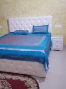 Gallery Cover Image of 1852 Sq.ft 3 BHK Apartment for rent in Nagla for 25000