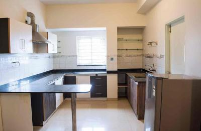 Kitchen Image of PG 4642851 Bellandur in Bellandur