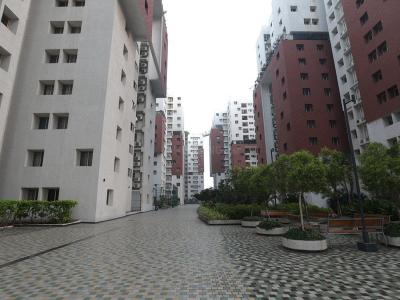 Gallery Cover Image of 1240 Sq.ft 2 BHK Apartment for rent in Annanagar East for 28500