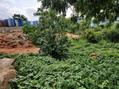 6300 Sq.ft Residential Plot for Sale in Kothaguda, Hyderabad