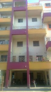 Gallery Cover Image of 845 Sq.ft 2 BHK Apartment for rent in Narhe for 8000