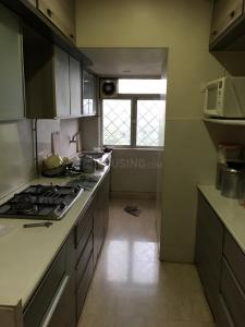 Kitchen Image of Green Property PG in Andheri East