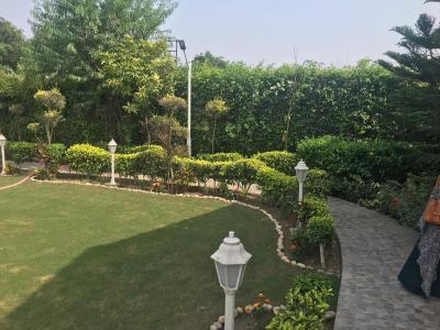 Gallery Cover Image of 1008 Sq.ft 3 BHK Independent House for buy in Sector 135 for 7500000