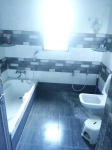 Common Bathroom Image of 4500 Sq.ft 5 BHK Independent House for buy in Chala for 20000000