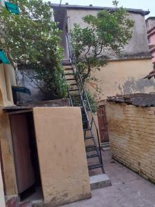 Balcony Image of PG 6553291 Kalighat in Kalighat