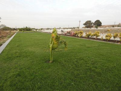 500 Sq.ft Residential Plot for Sale in Rau, Indore