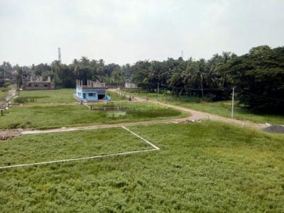 1440 Sq.ft Residential Plot for Sale in Amtala, Kolkata