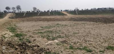 1355 Sq.ft Residential Plot for Sale in Lalbagh, Patna
