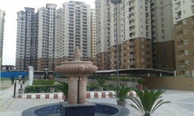 Gallery Cover Image of 950 Sq.ft 2 BHK Apartment for rent in Sector 78 for 16500