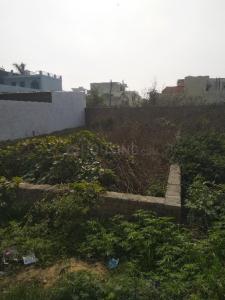 1747 Sq.ft Residential Plot for Sale in Thapar Nagar, Meerut