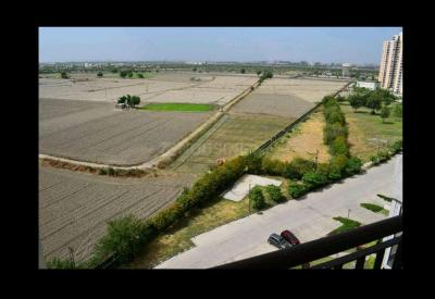 150 Sq.ft Residential Plot for Sale in Manzoor Gadhi, Aligarh