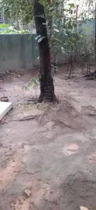 5760 Sq.ft Residential Plot for Sale in A-Zone, Durgapur
