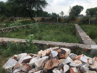 Gallery Cover Image of  Sq.ft Residential Plot for buy in Jagatpura for 4352000
