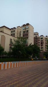 Gallery Cover Image of 1450 Sq.ft 3 BHK Apartment for rent in Phi II Greater Noida for 14000