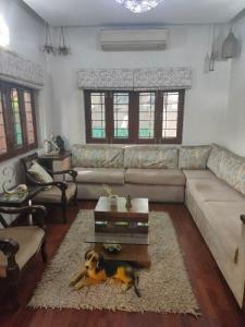Gallery Cover Image of 1800 Sq.ft 3 BHK Apartment for rent in Saket for 60000