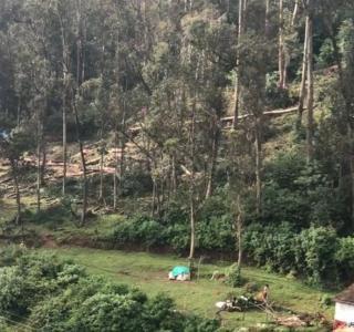 2420 Sq.ft Residential Plot for Sale in Pudumund, Nilgiris