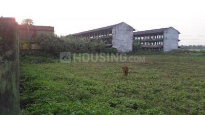 15840 Sq.ft Residential Plot for Sale in Dankuni, Hooghly