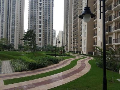 Gallery Cover Image of 1750 Sq.ft 3 BHK Apartment for rent in Sector 150 for 22000