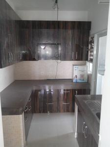 Gallery Cover Image of 1521 Sq.ft 3 BHK Apartment for rent in Noida Extension for 10000