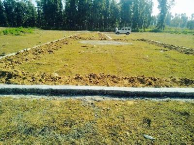 1692 Sq.ft Residential Plot for Sale in Viveka Nand Gram-Phase-I, Dehradun