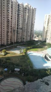 Gallery Cover Image of 1685 Sq.ft 3 BHK Apartment for buy in Paramount Floraville, Sector 137 for 7600000
